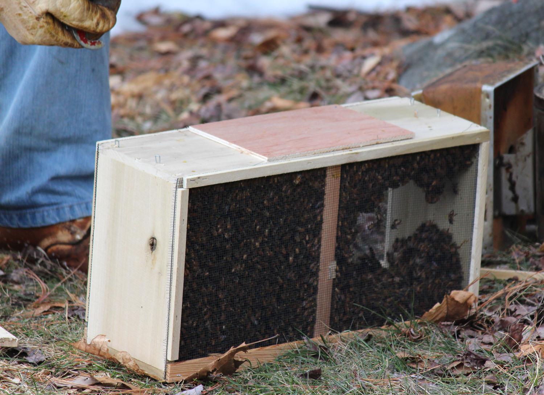 2013_BeeHive-Launch002