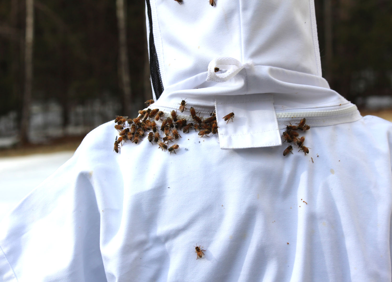 2013_BeeHive-Launch010